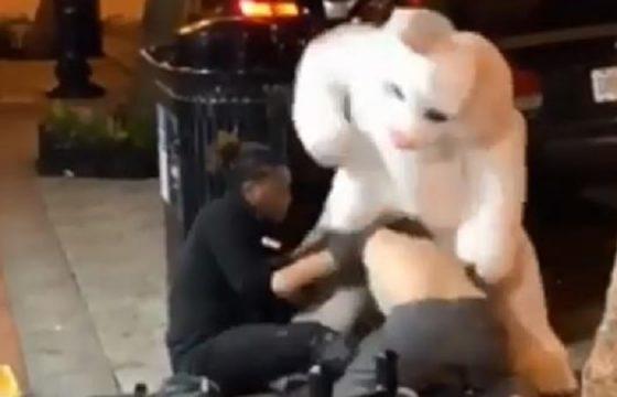 Florida, donna picchiata in strada: in sua difesa arriva uomo vestito da Easter Bunny