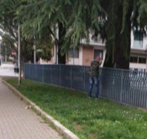 Vicenza, vede un uomo che fa pipì al parco e lo riprende: aggredita e insultata