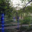 FuoriSalone, The Circular Garden: l'installazione diffusa per Eni all'Orto Botanico di Brera 2