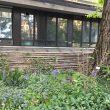FuoriSalone, The Circular Garden: l'installazione diffusa per Eni all'Orto Botanico di Brera 5