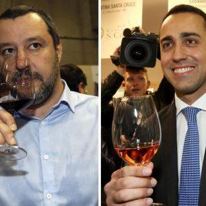 """Salvini sms, """"questi grillini sono delle m..."""". Di Maio: """"Vuoi far cadere il governo"""". Fino alle Europee il catalogo è questo"""