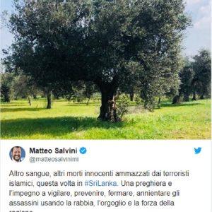 "Sri Lanka, Salvini su Twitter: ""Terroristi islamici..."""