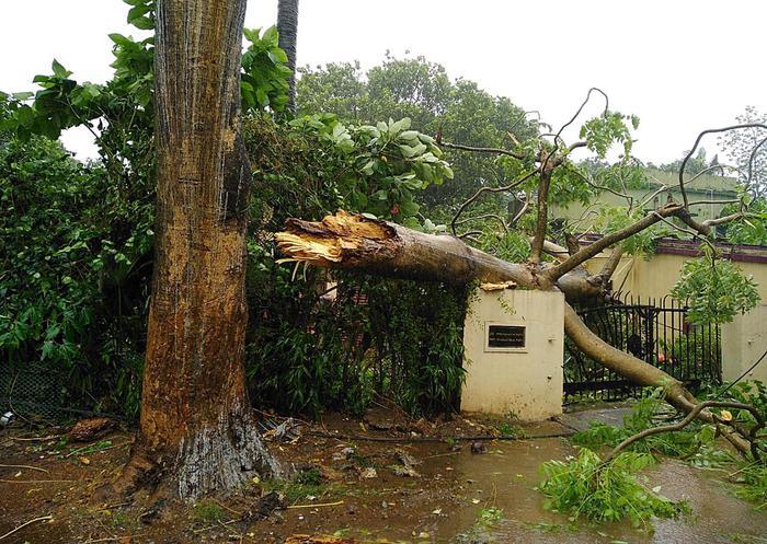 India: ciclone Fani, 1,2 milioni persone abbandonano le loro case1