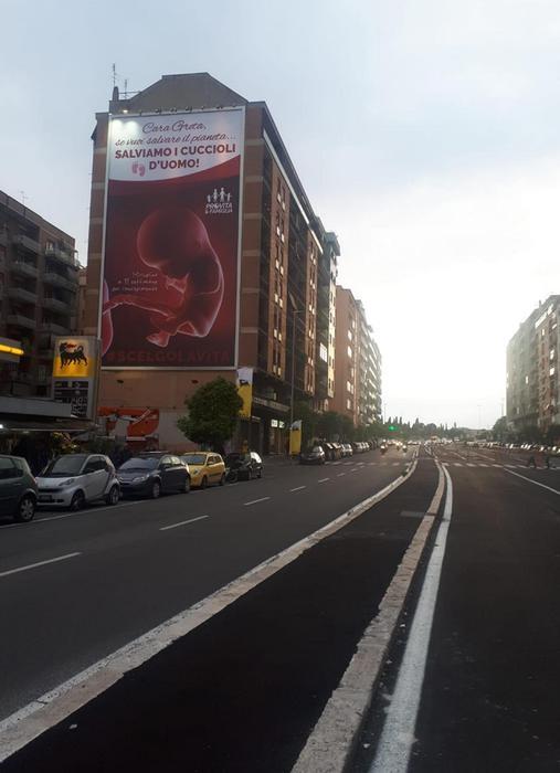 """Roma, maxi manifesto anti-aborto: il più grande mai visto. """"Greta, salviamo i cuccioli d'uomo""""03"""