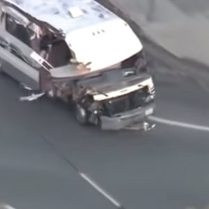 Los Angeles, camper rubato in fuga: il cane si lancia dal finestrino per salvarsi VIDEO