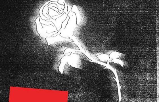 La copertina dell'album di LIBERATO