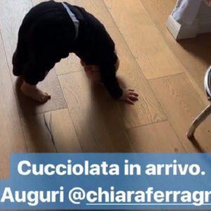 Chiara Ferragni di nuovo incinta? Il gesto premonitore del piccolo Leone