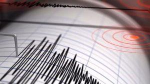 terremoto papua