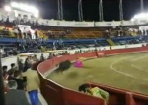 torero corrida