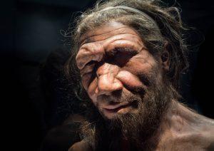 Uomo di Neanderthal, la sua estinzione causata dalla sterilità delle donne?