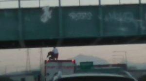 Milano, si sporge da un cavalcavia per suicidarsi: un camionista gli salva la vita VIDEO
