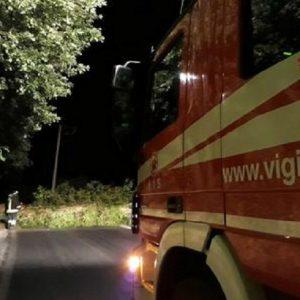 Tombolo (Padova), tocca cavi elettrici mentre innaffia le piante: 74enne muore fulminata (foto Ansa)