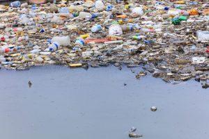 Mar Tirreno, un'isola di rifiuti di plastica galleggia tra l'Elba e la Corsica, nel santuario dei cetacei