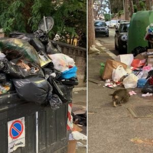 """Rita Dalla Chiesa, le foto della spazzatura a Vigna Clara su Twitter: """"Grazie sindaco Raggi"""""""