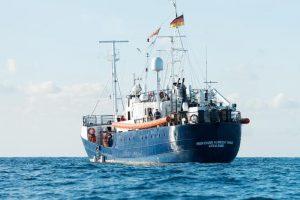 """Sea Watch, la comandante Carola Rackete: """"Porto i migranti a Lampedusa, mi tolgano la nave"""""""