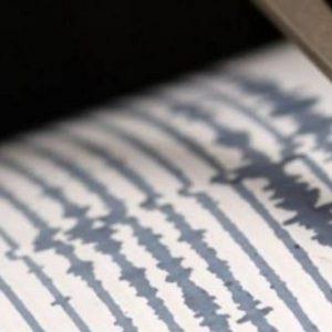 Terremoto Nuova Zelanda, scossa di magnitudo 6,5. La settima forte scossa in 4 giorni