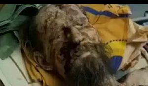 Russia, uomo sopravvive un mese prigioniero nella tana dell'orso: parti del corpo in decomposizione