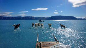 groenlandia ghiaccio scolto