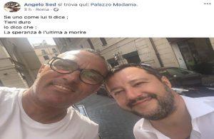 """Daniela Martani contro Salvini: """"Difende le botticelle romane"""" (foto Ansa)"""
