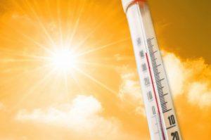 Gli effetti del caldo, cosa si rischia con l'afa: dai crampi al colpo di calore