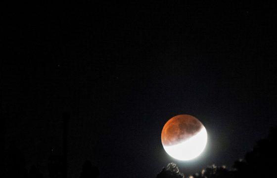 Eclissi parziale lunare La Palma