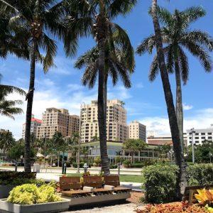 A West Palm Beach la canzone Baby Shark tutta la notte per cacciare i senzatetto dal parco