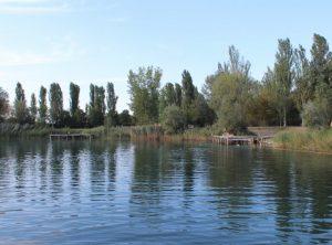Portomaggiore (Ferrara), tredicenne si tuffa nel laghetto dell'agriturismo: è gravissimo