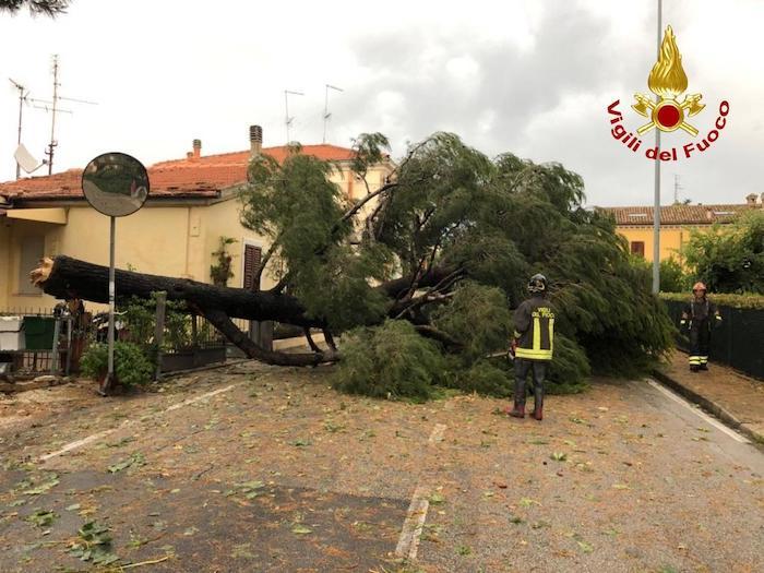 Marche, tempesta e vento a 150 km/h: Numana devastata, litorale distrutto 01