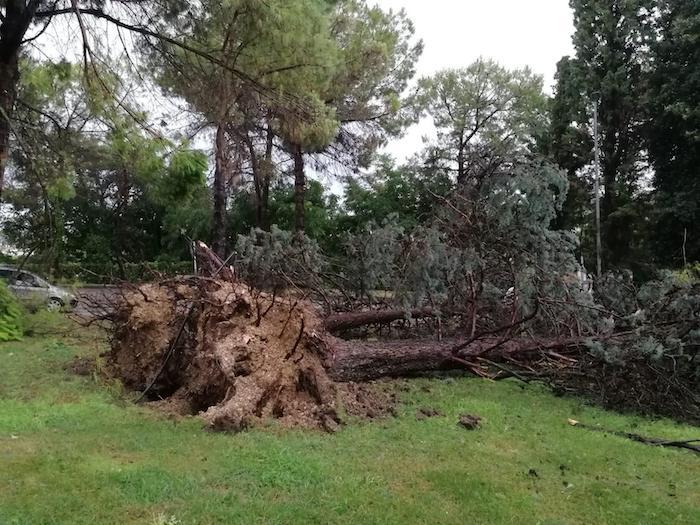 Marche, tempesta e vento a 150 km/h: Numana devastata, litorale distrutto 02