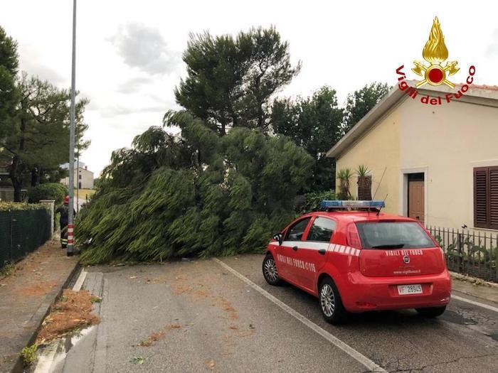 Marche, tempesta e vento a 150 km/h: Numana devastata, litorale distrutto 04