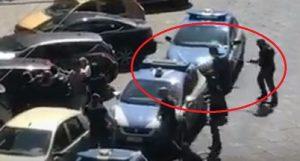 Napoli: ecco il VIDEO del poliziotto che spara al pitbull che aggredisce il collega