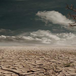 Clima, riscaldamento globale: tra 30 anni Milano come Dallas...Tutti migreranno 1000 km a Nord