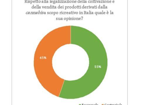 Sondaggio marijuana: 55% la vuole legale. Se light 64% di sì alla vendita 2