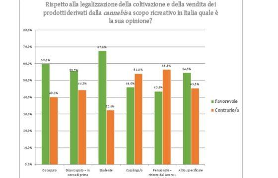 Sondaggio marijuana: 55% la vuole legale. Se light 64% di sì alla vendita 4