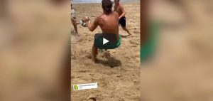 Totti portiere parate spiaggia video youtube