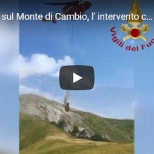 Bovino in difficoltà sul Monte di Cambio, l'intervento con l'elicottero AGENZIA VISTA