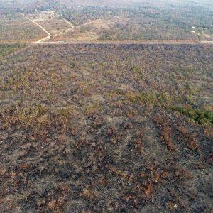 Amazzonia devastata dagli incendi