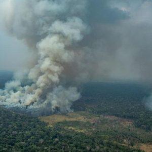 """Amazzonia """"non produce il 20% dell'ossigeno della Terra"""""""