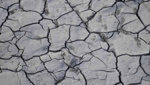 Caldo: fino a 50 gradi registrati in Italia negli ultimi giorni di agosto al livello del suolo