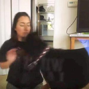 youtuber picchia cane