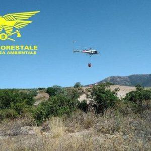 Incendi in Sardegna, un elicottero in azione