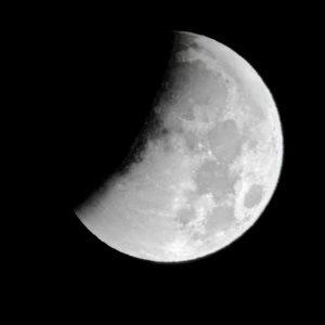 La luna non influenza nascite e umore