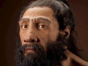 Neanderthal sapevano produrre il catrame: lo usavano come adesivo per realizzare armi e oggetti
