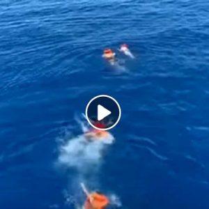 Open Arms, cinque migranti si gettano in acqua provano a raggiungere Lampedusa a nuoto VIDEO