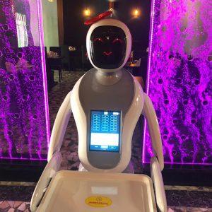 Amy, cameriera robot
