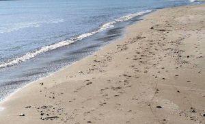 Santo Domingo, calpesta un filo scoperto in spiaggia: 17enne muore folgorata