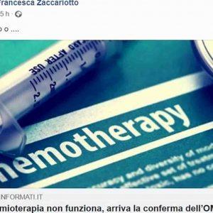 """Francesca Zaccariotto, l'assessore di Venezia e l'articolo condiviso su Facebook sulla chemio """"che non funziona"""""""