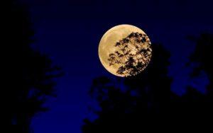 Luna Piena del Raccolto a partire dalle 19.50 del 13 settembre. La prossima sarà nel 2049