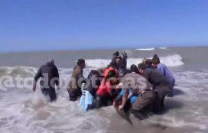orca spiaggiata argentina