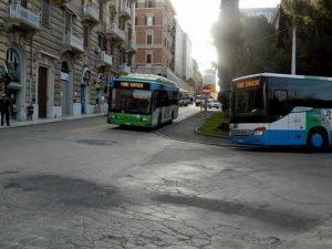 ancona autobus